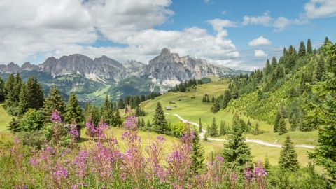 Image: Alta Badia in summer